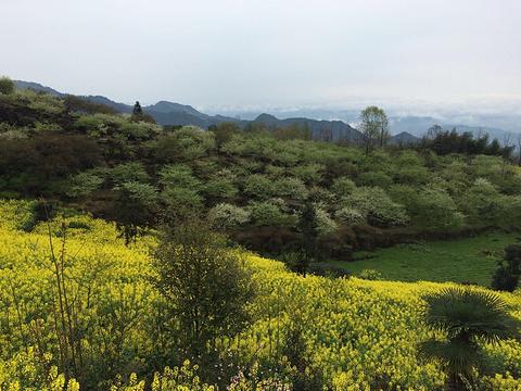 大邑雾山旅游景点图片