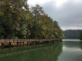 梅子湖栈道