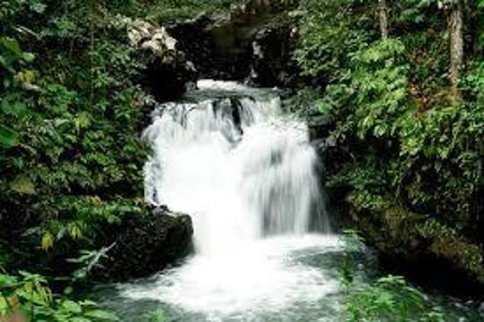 乌鲁庞森林保护区旅游景点图片