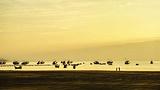 黄金海岸渔寮金沙滩