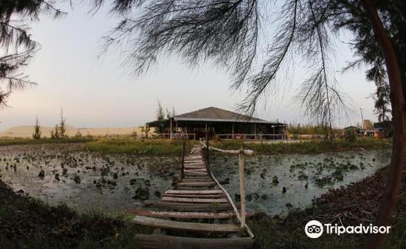 Lotus Lake旅游景点图片