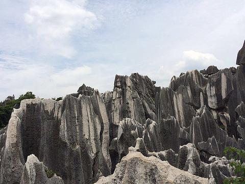 大小芝云洞旅游景点图片