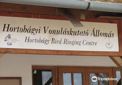 Hortobagy国家公园旅游景点图片
