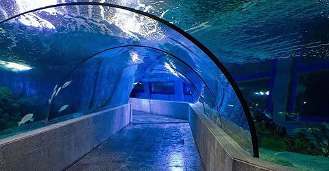 长滩岛探索隧道(Discovery Tunnel in Boracay)的图片
