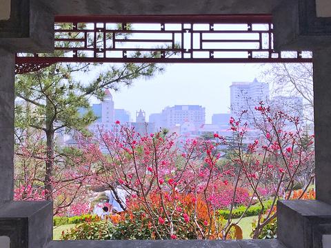 环翠楼公园旅游景点图片