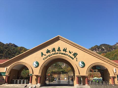 天桥沟森林公园-小卖部旅游景点图片