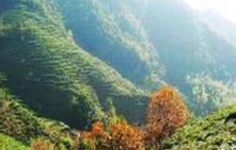秦望山的图片