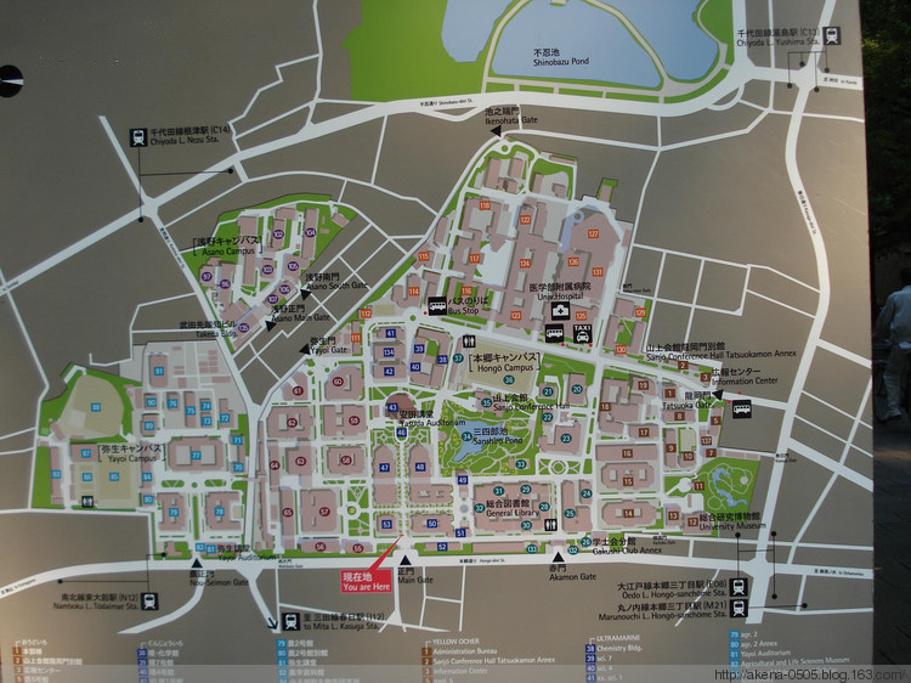 东京帝国大学旅游导图