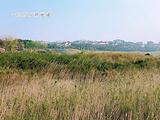 金海湾公园(滨江文化区)