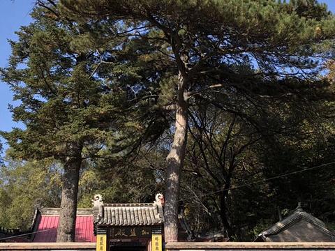 龙潭寺旅游景点图片