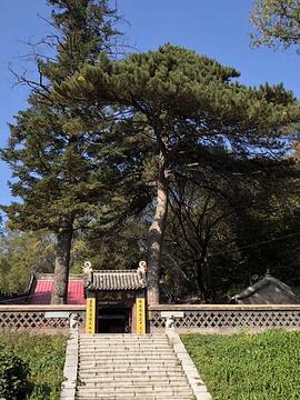 龙潭寺的图片