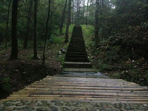 黄大仙赤松园旅游景点图片