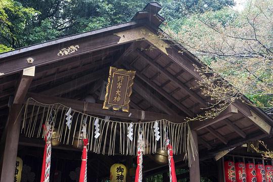 野宫神社旅游景点图片