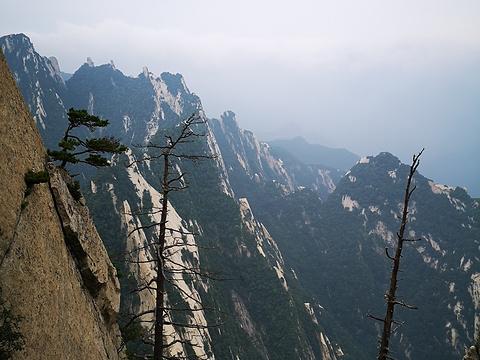 华山风景名胜区-直通车乘车点旅游景点图片