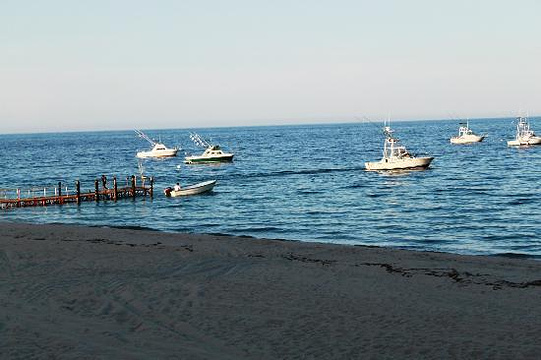Palmas Bay旅游景点图片