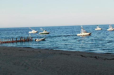Palmas Bay的图片