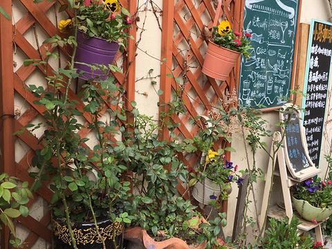 小路咖啡馆旅游景点图片