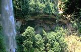 燕子岩国家森林公园