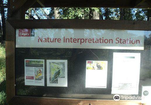 Inglewood Bird Sanctuary and Nature Centre旅游景点图片