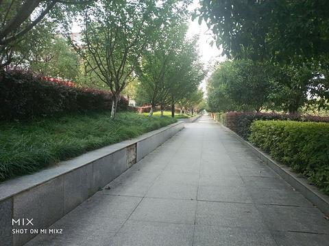 景谊水上乐园(崇阳店)旅游景点图片