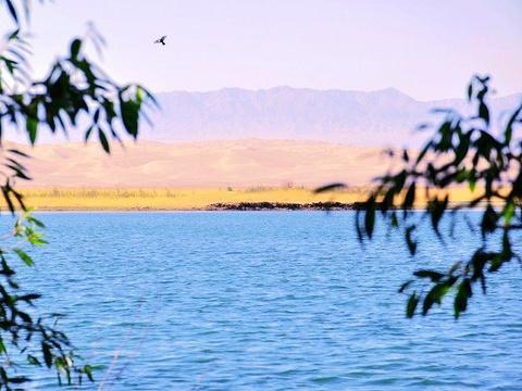 渥洼池旅游景点图片