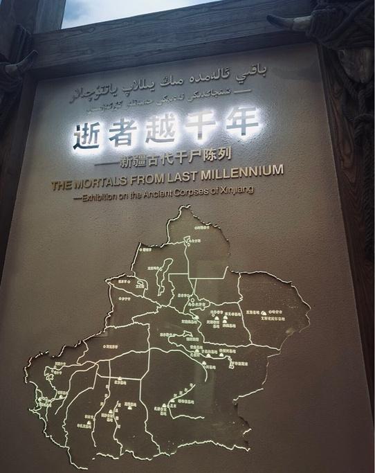 新疆维吾尔自治区博物馆旅游导图