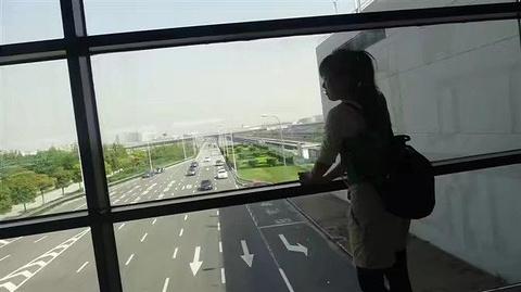 龙嘉国际机场旅游景点攻略图