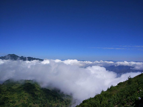 千坝草原旅游景点图片