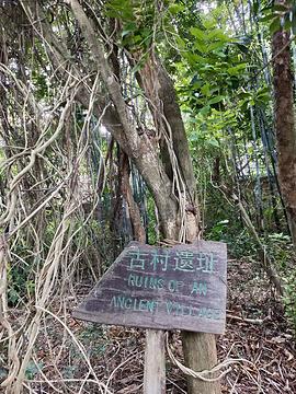 北海大江埠旅游景点攻略图