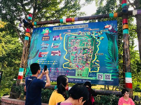 北京野生动物园自驾游览区旅游景点攻略图