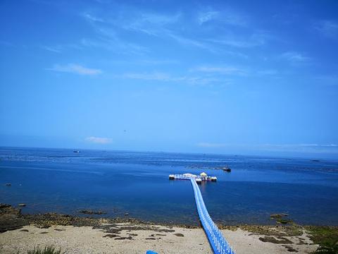 大长山岛的图片