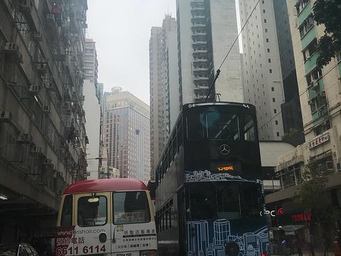 莲香居旅游景点图片