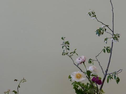 北京世园公园旅游景点图片