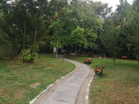 文峰公园旅游景点攻略图