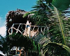 菲律宾二度游 宿务 莫阿尔博阿尔、锡基霍尔、邦劳岛 9日游