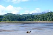 西雅图旅游景点攻略图片