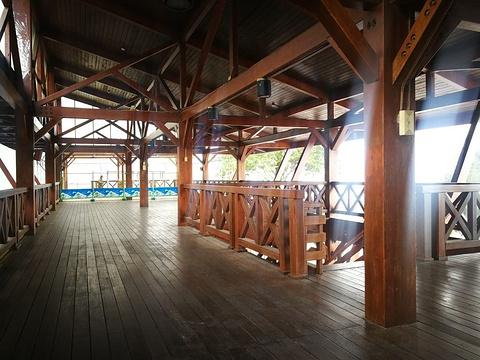 阿里山车站旅游景点图片