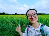 开平旅游景点攻略图片
