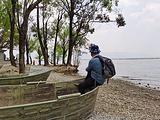 环洱海旅拍