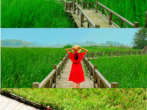 野鸭湖国家湿地公园旅游景点图片