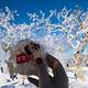 雪乡十里冰雪画廊