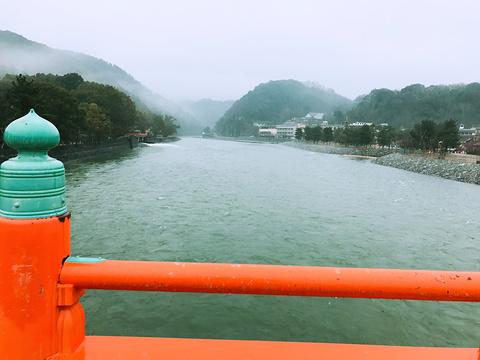 宇治桥旅游景点图片