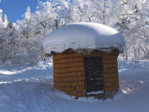 雪乡十里冰雪画廊旅游景点图片