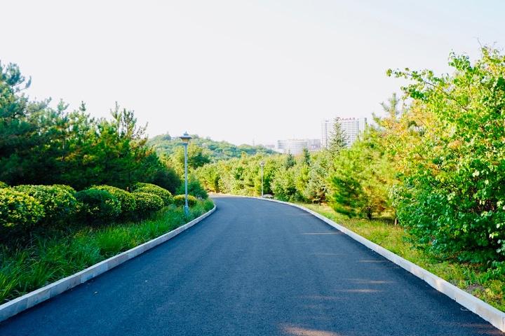 """""""这个公园应该说总体面积很大,他就建在老虎山边虎山公园/穿越山峰看到老虎墙_老虎山生态公园""""的评论图片"""