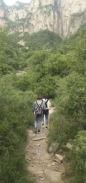 南坪村旅游景点攻略图