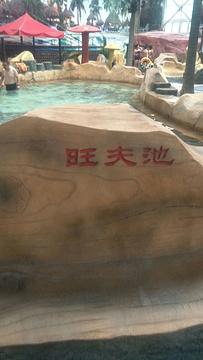 林甸温泉旅游景点攻略图