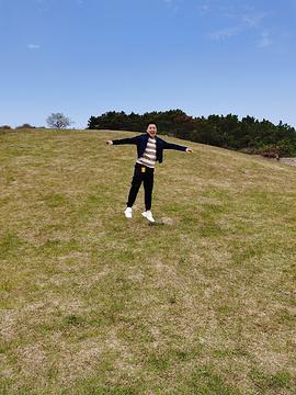 小麦岛旅游景点攻略图
