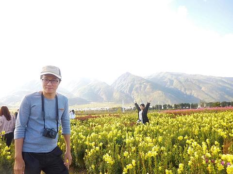 花语牧场旅游景点攻略图