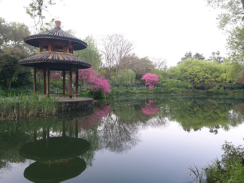 杨公堤旅游景点攻略图