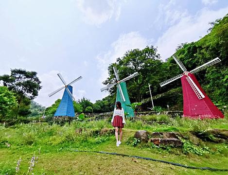 广州二龙山薰衣草森林世界旅游景点攻略图
